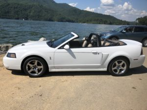 Cobra at Watauga Point, Watuaga Lake, Hampton, TN.