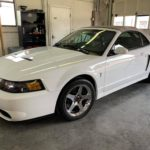 Joe Pearce's Oxford White 2003 Ford Mustang SVT Cobra Convertible